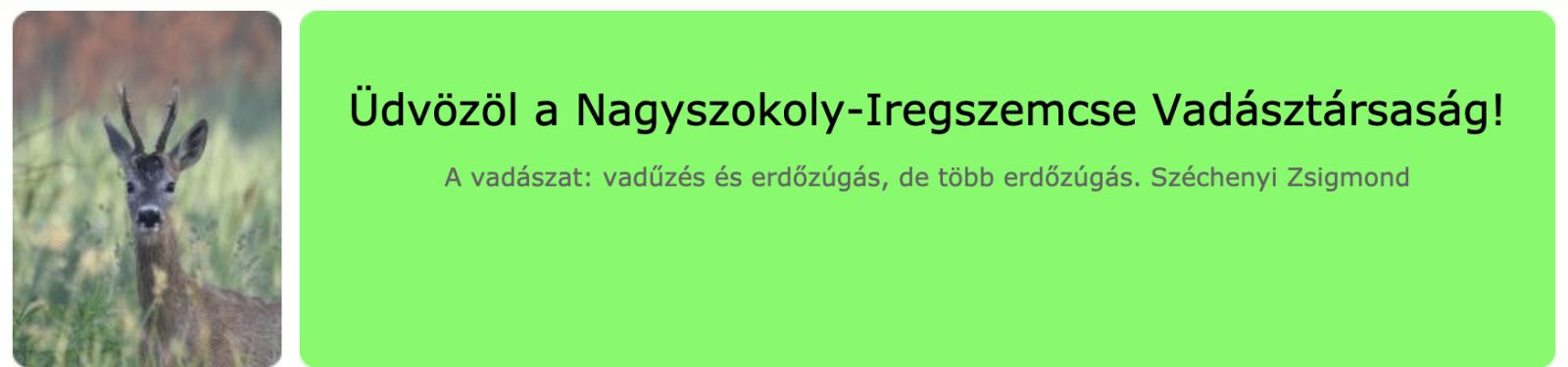 Nagyszokoly-Iregszemcse Jagdverein - Ungarn, Bezirk Somogy